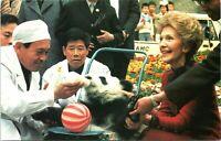 First Lady Nancy Reagan Pandas Peking Zoo Beijing 1984 Postcard - Unposted