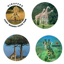 Giraffe Magnets: 4 Cool Giraffes for your Fridge or Collection-A Great Gift
