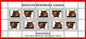 CATS M/S MNH DOMESTIC ANIMALS & PETS