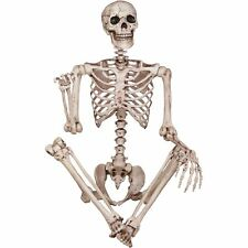 165cm Halloween Skeleton Life Size Decoration Poseable Party Prop