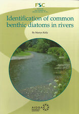 Identification of Common Benthic Diatoms in Rivers by Field Studies Council