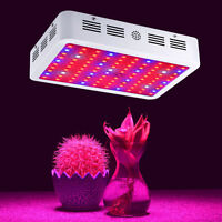 1000W LED Full Spectrum Grow Light Indoor for Medical Plants Indoor Veg Bloom