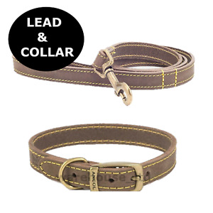 Ancol Dog Collar or Collar Set Timberwolf Leather Puppy Collar Sable S, M, Large