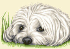 More details for maltese dog complete counted cross stitch sewing kit **jann designs