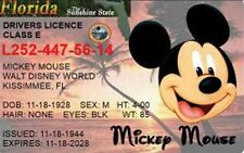 "MICKEY MOUSE DRIVERS LICENSE #2. FRIDGE MAGNET 2.5"" X 4"". DISNEY WORLD FREE SHIP"