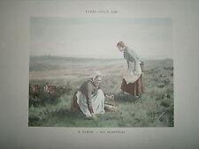Gravure 19° 1899 couleur Peinture E. Damas aux champignons paysannes champétre