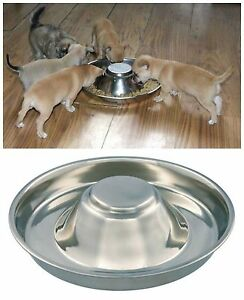 Puppy Dog Pet Cat Litter Food Feeding Weaning Silver Stainless Feeder Bowl Dish