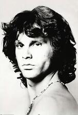 Jim Morrison The Doors Poster