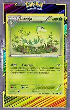 Lianaja - N&B: Noir et Blanc - 4/114 - Carte Pokemon Neuve Française