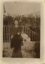 PHOTO ANCIENNE - VINTAGE SNAPSHOT - OMBRE PHOTOGRAPHE MODE CHIEN - SHADOW DOG