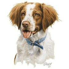 "Brittany Dog Head with Collar on 18x22"" Fabric Panel to Sew.Actual Pic is 12x14"""