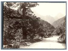 France, Le Chêne brûlé, Route des Eaux-Chaudes à Gabas  Vintage citrate print.