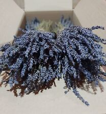Greek Dried Lavender Bunches Organic 1200 stems 300*4 bunch | 30cm | Harvest 19