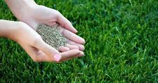 15kg PREMIUM HARD-WEARING TOUGH BACK LAWN GRASS SEED DEFRA CERTIFIED SEEDS