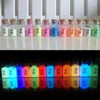 12 Colors Fluorescent Super Bright Glow in the Dark Luminous Powder Pigment