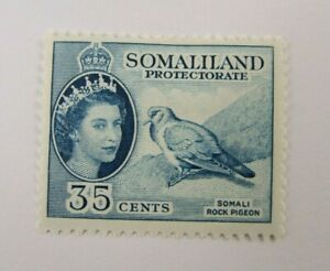 1958 Somaliland Protectorate  SC #133 SOMALI ROCK PIGEON  MH 35 cent stamp