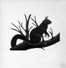 1928 Unusual woodcut or etching of Red Squirrel mammal