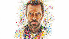 Dr house gregory capsule in art Silk poster 14 X 24 inch wallpaper
