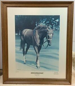 """Secretariat """"At The Belmont"""" Framed Print Tony Leonard Limited Signed Ky Derby"""