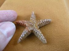 Y-STA-8) little red Starfish marine sea star stone carving SOAPSTONE love stars