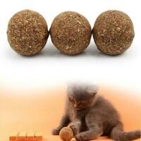 Essbare gesunde natürliche Katzenminze jagen die Reinigungszähne Katze-Haus I1N1