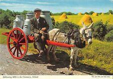 BT2811 Delivering milk t the Creamery donkey ane folklore      Ireland