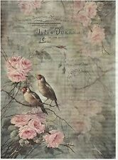 Rice Paper for Decoupage Decopatch Scrapbook Craft Sheet Vintage Birds on Roses