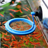 Aquarium Feeding Ring Fish Tank Station Floating Food Tray Square/Circle Feeder