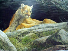 Cougars Ledge Jorge Mayol Limited Edition Print