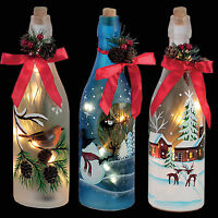 Christmas Decoration 29cm Battery Light Up Glass Bottle - Choose Design