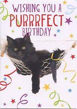 Funny Cat vous souhaitant une Purrrfect Anniversaire Carte De Vœux 1STP&P
