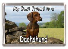 "Dachshund (Smooth) Dog Fridge Magnet ""My Best Friend is a ......."" by Starprint"