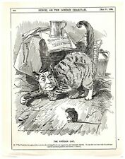 1896 Paul Kruger Pictured as a Cat Punch Cartoon `18P