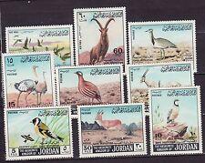 Jordan 1968 - MNH - Vogels/Birds/Vögel