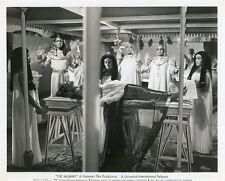 YVONNE FURNEAUX THE MUMMY  HAMMER 1959 VINTAGE PHOTO ORIGINAL #2
