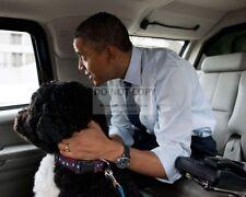 "BARACK OBAMA & PET DOG ""BO"" IN PRESIDENTIAL LIMO ""THE BEAST"" 8X10 PHOTO (ZY-377)"