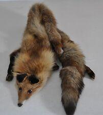 Pelzkragen Fellkragen Fuchskragen Fuchsfell ganzer Fuchs als Kragen