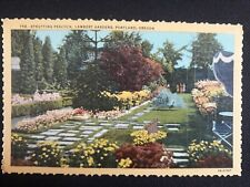 Postcard strutting Peacock Lambert Gardens  Portland Oregon USA Postcard