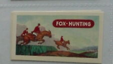 #8 fox hunting - Sport card