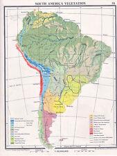 1961 MAP ~ SOUTH AMERICA VEGETATION ~ SELVAS PAMPAS FOREST AGRICULTURE DESERT