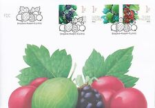 Finland 2013 FDC - Garden Berries Blackberry Gooseberry and Red Currant