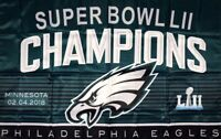 Philadelphia Eagles NFL Super Bowl Championship Flag 3x5 ft Banner Flag Man-Cave