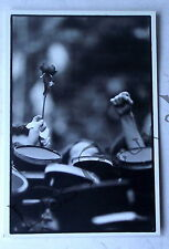 Carte postale Mai 1981 , rose et kepis gendarme Lochon   postcard