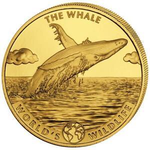 Kongo 100 Francs 2020 - Der Wal World´s Wildlife (2.) Anlagemünze - 1 Oz Gold ST