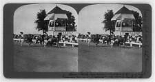 Reproduction,Dan Patch,Decatur,Illinois,IL,Light Harness Horses breaking record