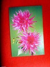 RETRO  PINK FLOWERS POLISH POSTCARD