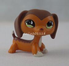 Littlest Pet Shop LPS Brown Savanah Dachshund Dog #675 Puppy Green Eyes Girl Toy