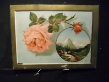 Victorian scrap # 2386 - PINK ROSE AND MONT BLANC