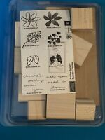 """Stampin Up! """"Painted Posies"""" Two Step Stampin Brand New 8pc Set Flowers, Leaves,"""