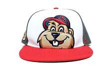 GA Gwinnett Braves Groundhog 47 Brand Snapback Baseball Hat- Multi - Sz O/S